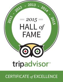 Excellence Award 2015