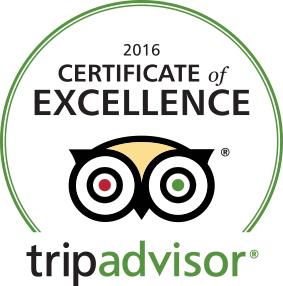 Excellence Award 2016